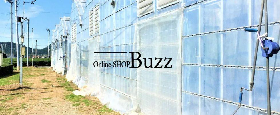 Online-SHOP Buzz
